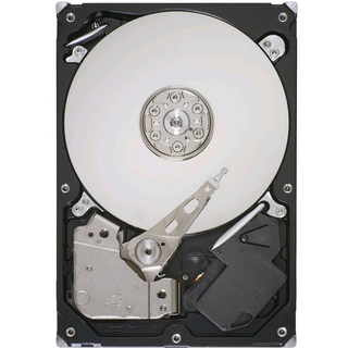 ST31000524AS (SEAGATE)