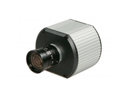 AV1300 (Arecont Vision)